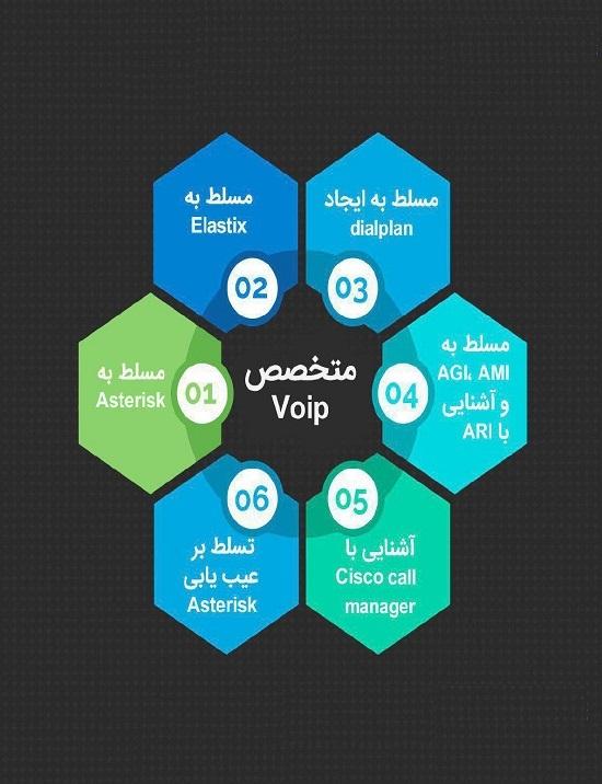 متخصص Voip